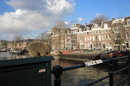 Womby-in-Amsterdam