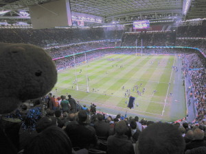 Womby at Rugby World Cup